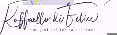 raffaellodifelice.it logo